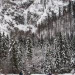 Na poti pod slap prečimo pomrznjeno reko