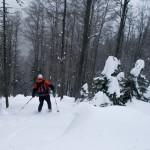 Fantastičen sneg!