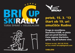 Skirally BricCup