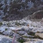 Zelenjavni spodnji raztežaji Mosoraške